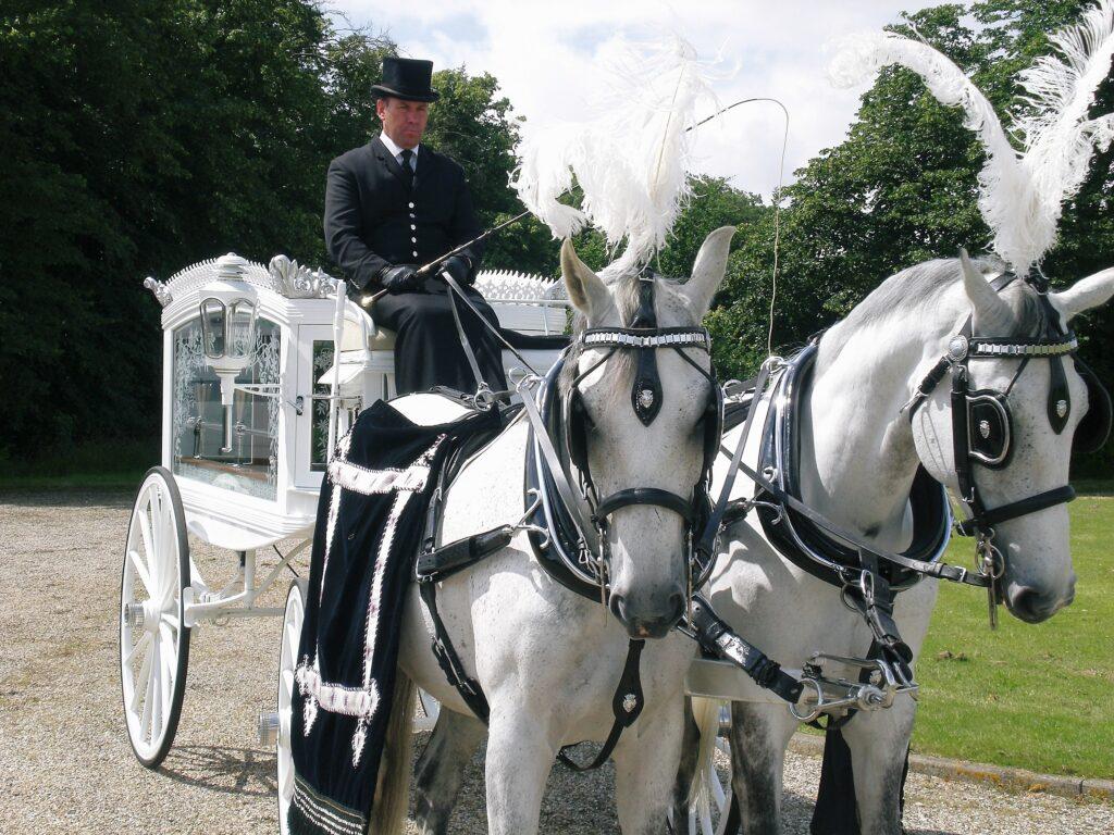 White Horse Drawn Hearse & grey pair